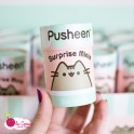 Pusheen Surprise Mini - Figurine vinyle - Série 1